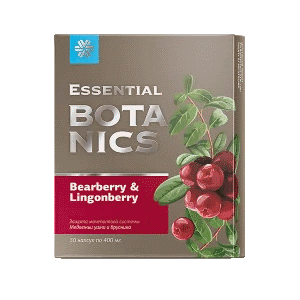 Медвежьи ушки и брусника — Essential Botanics